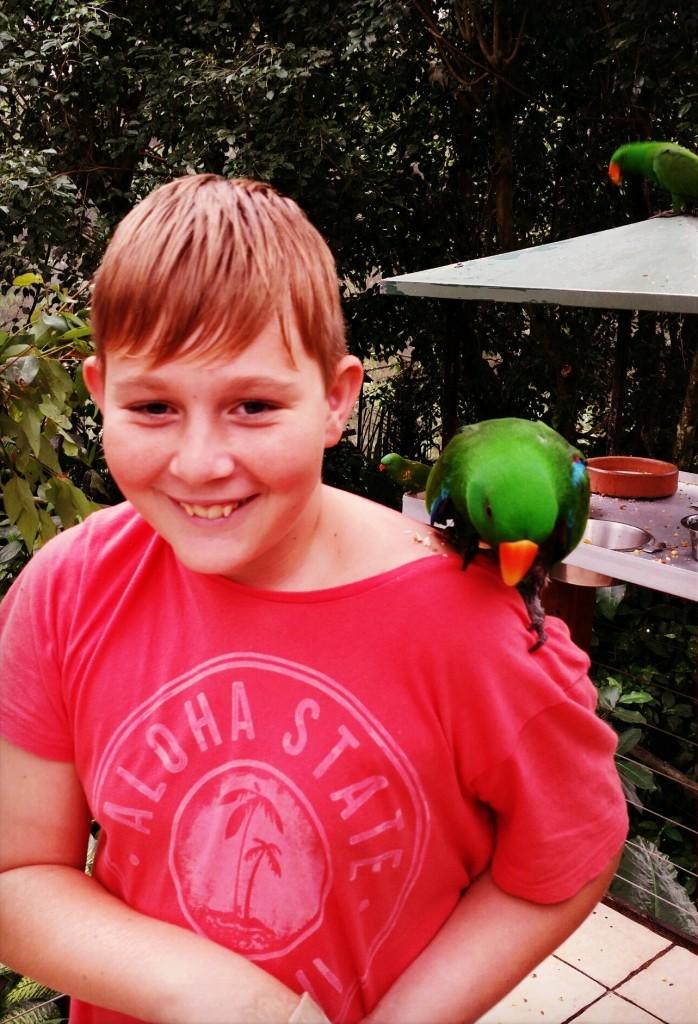 Ezrah with Parrot at Birdworld 2