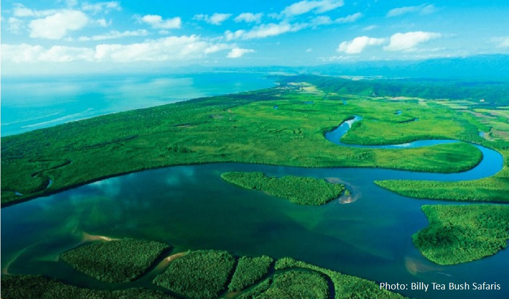 Tropical North Queensland Where The Rainforest Meet The Great Barrier Reef
