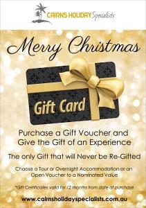 Gift Voucher Christmas