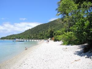 Beautiful Beach on Fitzroy Island