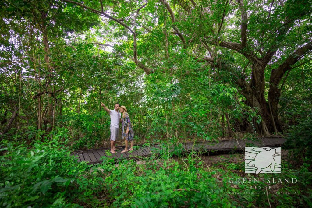 Explore Green Island on the boardwalks. Image courtesy of Green Island Resort.