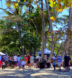 Palm Cove Events