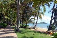 Enjoy the tropical feel of Palm Cove beach