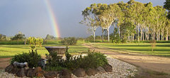 - Gumtree on Gillies B&B Atherton Tablelands