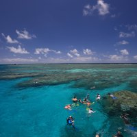 Great Barrier Reef Trip | Snorkellers in the water on Port Douglas Australia | Visit 3 Reef Locations
