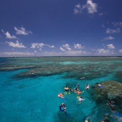 Great Barrier Reef Charter | Snorkellers in the water on Port Douglas Australia | Visit 3 Reef Locations