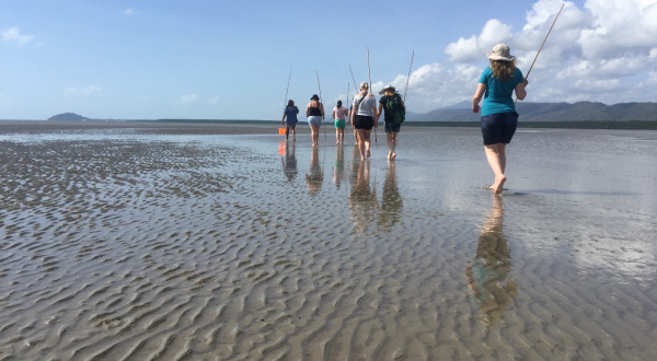 1 Day Tour Daintree Rainforest & Mossman Gorge | Learn To Hunt On The Beach
