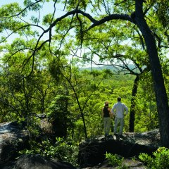 1 Day Tour | Scenic Views On The Way To Cooktown