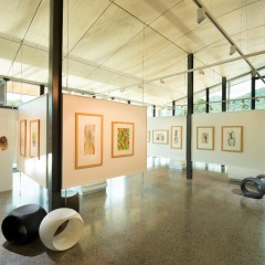 1 Day Tour | Small Group | Includes Mossman Gorge Centre Art Gallery