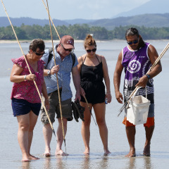1 Day Tour To Daintree & Mossman Gorge | Small Group | Fishing