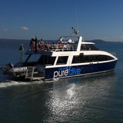 Great Barrier Reef Tour | Comfortable Dive Only Boat | Great Barrier Reef Australia | Port Douglas