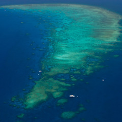 1 Hour Reef Scenic Flight in Tropical North Queensland