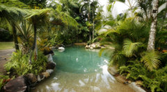 1 of 2 Swimming Pools at Ferntree Rainforest Lodge Daintree National Park