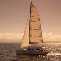 1.5 Hour Private Charter Yacht Sunset Cruise From Port Douglas Tropical North Queensland