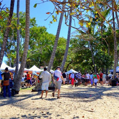 Reef Feast Palm Cove