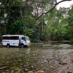 2 Day 1 Night Cooktown Trip | Bloomfield Track
