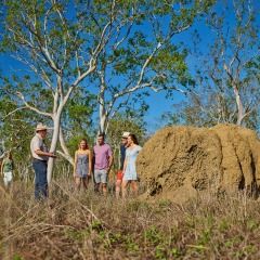 2 Day 1 Night Cooktown Trip | Outback