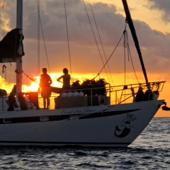2 Day 1 Night Liveaboard Reef Trip | Sunset On The Great Barrier Reef Australia