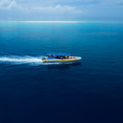 2 Day 1 Night Raiunforest & Reef Exclusive Charter