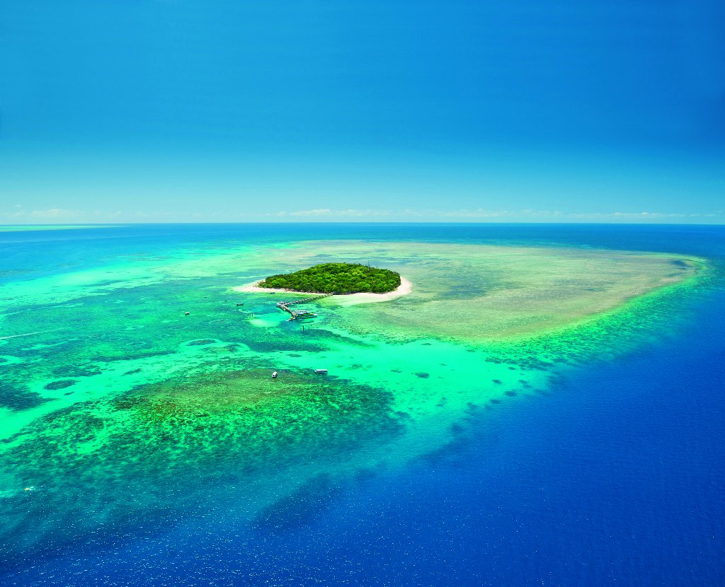 Reef And Rainforest Tours Reviews