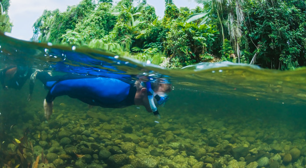 2 Day Private Charter To Daintree | River Snorkelling