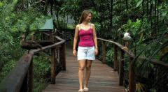 2 Night/3 Days Cairns - Cape Tribulation Tour