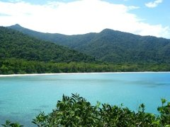 Daintree Retreat Holiday Home - WAW