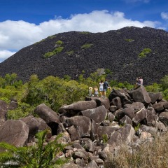 3 Day 2 Night Cooktown Tour | Black Mountain