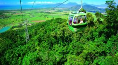3 Night Taste of Cairns Package - Green Is & Kuranda