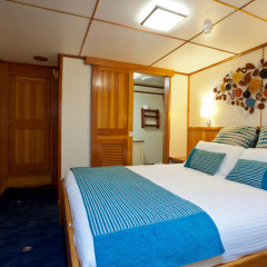 3 To 7 Days Great Barrier Reef Liveaboard | Stateroom Cabin