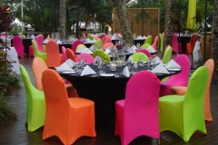 Tropical Set up for Conference function