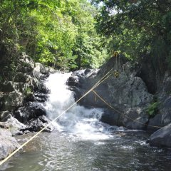 35m Zipline Over the Flowing Creek - Cairns Canyoning Tour