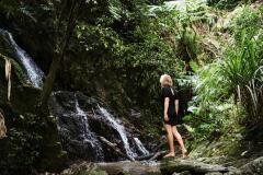 Daintree Eco Lodge & Spa Resort