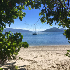 4 Day Open Water Course | Overnight Option | Wake Up On Fitzroy Island