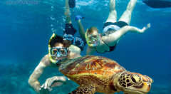 4 Night Cairns Fun Package Deal