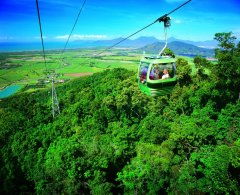 4 Night Cairns Highlights Package Deal