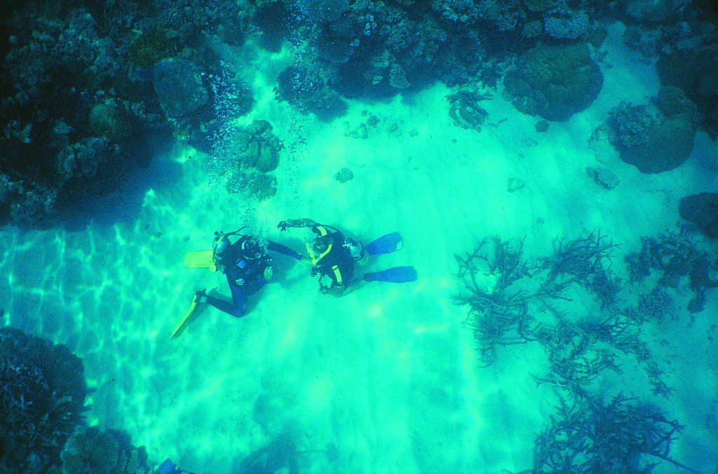 one night liveaboard - Review of Cairns Dive Centre ...