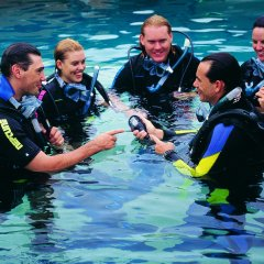 5 Day learn to PADI dive courses Cairns Great Barrier Reef Australia