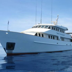Great Barrier Reef Liveaboard Dive Trip, 5 star luxury dive boats Cairns