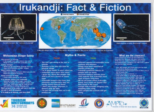 Irukandji Fact & Fiction Poster