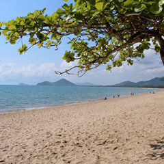 A Taste of Palm Cove 2011