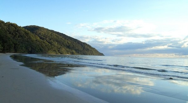 Cape Tribulation | Daintree | Mossman Gorge Tour | ATE