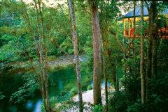 A side view from the Daintree Rainforest Resort to the Mossman River banks