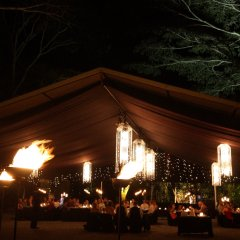A stunning dinner setting in the middle of the Daintree Rainforest