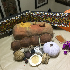 Aboriginal Art Gallery | Mossman Queensland | Workshop Morning & Afternoon