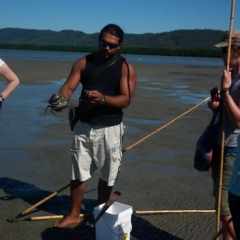 Aboriginal Cultural 1 Day Tour | Cooya Beach | Catching Crabs