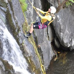 Abseiling in the Rainforest - Cairns Canyoning