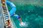 Great Barrier Reef Tour | Cairns Pontoon | Dive-Snorkel | Helicopter | Glass Bottom Boat