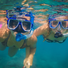 Adventure Snorkel Safari - Drift Along The East Side Of Normanby Island