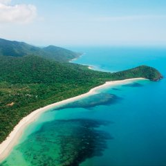 Aerial view Cape Tribulation coastline - Cairns scenic flights